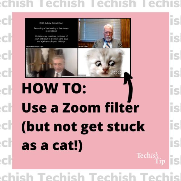 Zoom cat filter